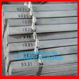 ASTM A36 Steel Flat Bar for Fabricated House