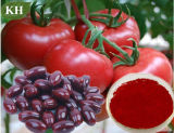 Natural Pigment 10%, 20%, 30% Lycopene Tomato Extract