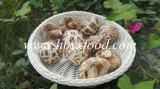 Dried Mushroom Dried Deep White Flower Mushroom Factory