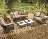 Rattan Outdoor Patio Wicker Garden Patio Martinique Lounge Home Hotel Office Sofa Set (J629)
