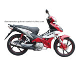 110cc New Product Cub TM110-2h Aamii