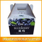 Color Printing Corrugated Outer Carton Box for Fruit