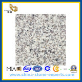 G655 Tong′an White Granite Slab for Countertop & Vanitytop (YQG-GS1014)