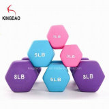 Home Gym Equipment Plastic Coated Color Dumbbell