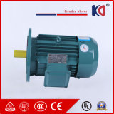 Ultra-Efficient Yx3 Series 3phase AC Induction Motor with Wholesale Price