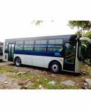 Sunlong 2017 Used City Bus (Slk6905)