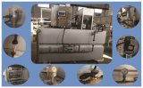 Professional Polymer Preparation and Dosing System