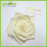 Fragrance Sola Flower for Reed Diffuser