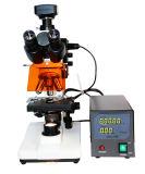 Mslxy-2 Cheap Price Reflected-Light Fluorescence Microscope Price