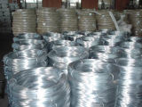 High Quality Electro Galvanized Steel Wire with Competitive Price