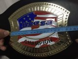 Custom Your Own Belt Use Own Team with Free Shipping