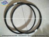 Dcec 3902127 Fly Wheel Gear Ring for Sale