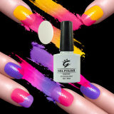 Top Brand Nail Art Gel Nail Polish