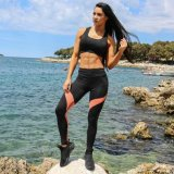 in Stock Free Sample Outwork Sport Exercise Fitness Yoga Pants Leggings 3043