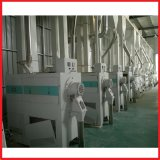 10-150 T/D Complete Rice Equipment