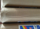 High Quality Galvanized Welded Wire Mesh with Competitive Price