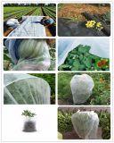 Cheap Spundbond Polypropylene Nonwoven Fabric