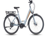Light Weight Electric Bicycle, Folding Electric Bike for Outdoor Travel (EB-079)