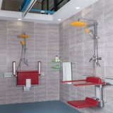 Rehabilitation Bathroom Stainless Steel Wall Mount Shower Seats for The Elderly