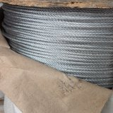 304 7*7 Stainless Steel Wire Rope Diameter 2mm