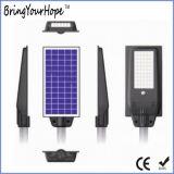 Powerful 30W Solar Road/Street Light with Human Motion Sensor (XH-SL-1008)