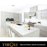 New Model Modern Partment Kitchen Cabinet TV-0121