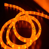 Manufacture 2 wire round vertical LED Rope Light with Ce, RoHS