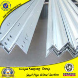 Paint Angle Bar /Galvanized Angle Bar Price /Milled Steel Angle Bar