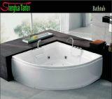 Computerized Jacuzzi Bathroom Shower Bathtub (TL-304)