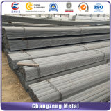 Hot Rolled Milled Steel Prime Steel Angle Bar (CZ-A60)