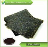 Laver Extract, Power 10: 1