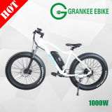 Electric Bicycle 1000W Two Motor of Electric Bike