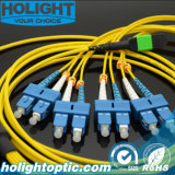 8 Core MPO to Sc Sm Fiber Optic Patch Cable