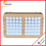 Lowest Factory 300W LED Plant Grow Light for Houseplants Flowering and Fruiting