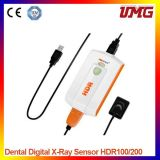High Quality Digital Dental Intraoral Sensor