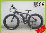 Sell China Long Range E Bicycle Snow Ebicycle Dune Buggy ATV Go Kart Sand Dirt Bike (KCMTB016)