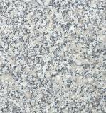 High Quality Polished/Flamed/Bush Hammered Granite G602