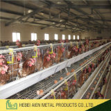 Good Price Automatic Layer Chicken Cages for Sale