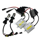 Xenon HID Lighting D2s D2r 12V 35W Canbus HID Xenon Kit with Good Xenon Gas for Philips 6000k HID Lamp