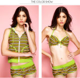 Four Pieces Anti-UV Stock Hot Sale Sexy Girl Hood Stripe Bikini