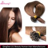 Wholesale European Remy Human Hair U-Tip Hair Extensions