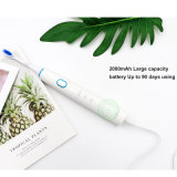 Oral Care Electric Toothbrush for Adult