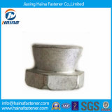 in Store High Quality H. D. G Shear Nut /Breakaway Nut
