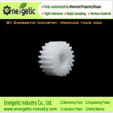 PP Plastic Micron Cylindrical Gear