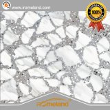 Quality Porcelain/Ceramic Glazed Terrazzo Tiles for Floor and Wall 600X600
