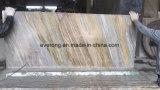 Indian Ariston Gold Beige Granite Slab for Floor Tile, Stairs, Countertop