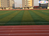 Football Field Artificial Grass with Tencate Yarn