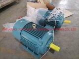 Ye2/Yx3 Universal Custom Electric AC Motor