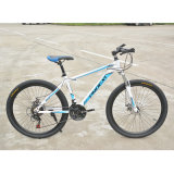 Competitive Price Men/Woman/Child Giant Bicycle Mountain Bike for Adults