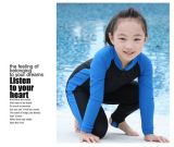 Diving Wear High Quality for Kids& Fashion Design style Swimwear